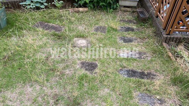 芝生をやめる前の庭